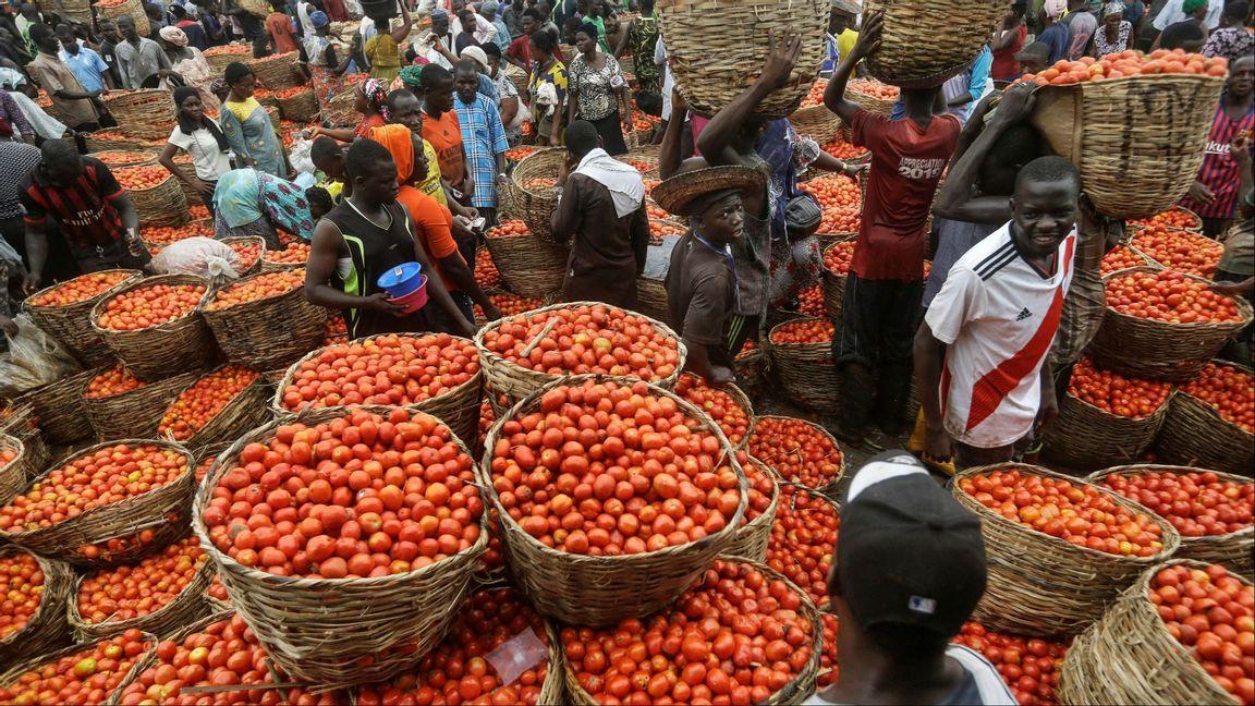 A vegetable market in Lagos, Nigeria, in April 2020. Photo: Sunday Alamba/AP/TT